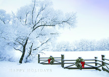 Frosty Winter Landscape Holiday Greeting Cards